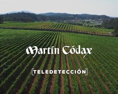 Teledetección aplicada á viticultura
